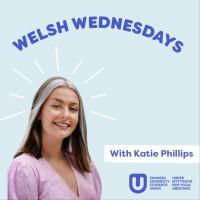Welsh Wednesdays