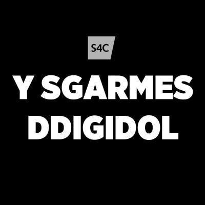 Y Sgarmes Ddigidol